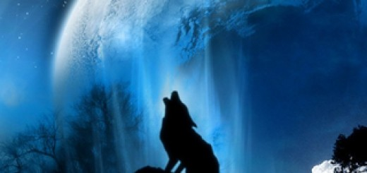 wallpaper para iphone lobo aullando