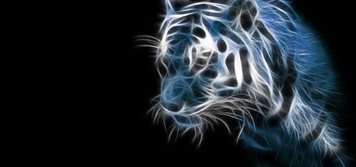 wallpaper hd en 3D de un tigre