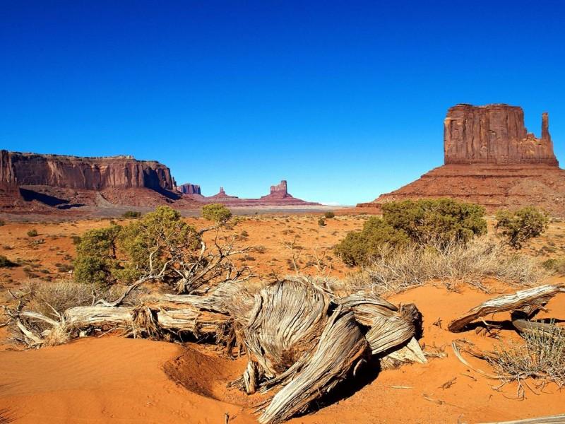 wallpaper de paisajes del desierto