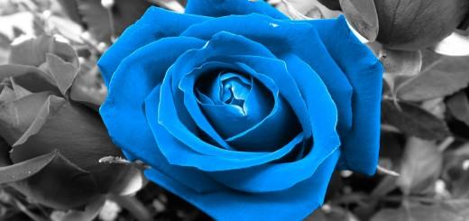 fondo de pantalla rosa azul